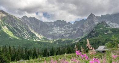 Znaleziono ludzkie szczątki w Tatrach